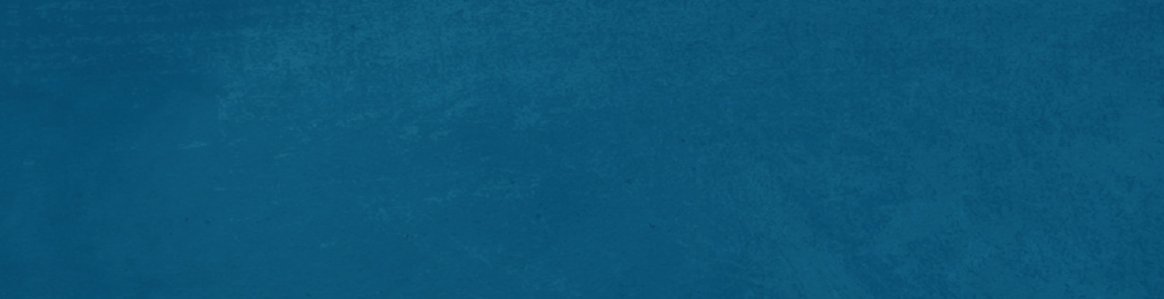 home-blue-banner3.jpg